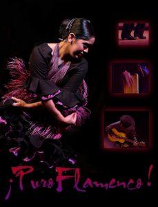 Puro Flamenco- La Nueva Generacion 10th Anniversar...