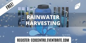 Rainwater Harvesting by Eco Centro