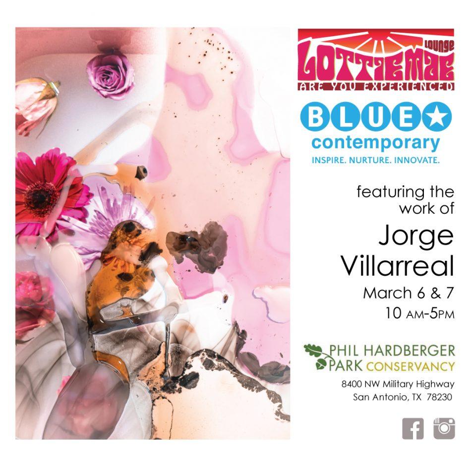 Lottie Mae Lounge exhibition pop up featuring arti...