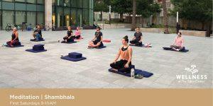 Wellness at the Tobin   Shambhala Meditation