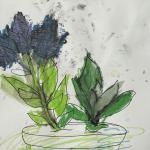 Botanical Sensations Bilingual Gallery Talk
