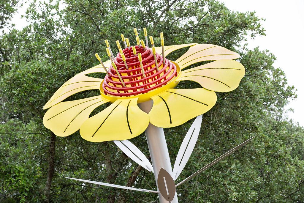 Bloom at Eisenhower Park