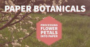 Botanical Garden Presents: Paper Botanicals: Processing Flower Petals into Paper
