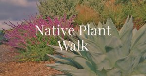 Botanical Garden Presents: Native Plant Walks (pre-registration necessary)