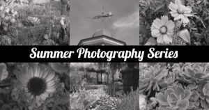 Summer Photography Series: Portraits on a Shoestring Budget