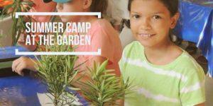 Urban Jungle Eco-Art II Camp (ages 9-12 yrs)