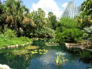 Family Adventure Garden Ribbon Cutting & Grand Opening at San Antonio Botanical Garden